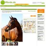 Kleinanzeige in pferde.de